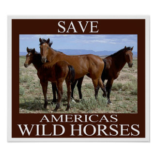 Save the Wild Horses Poster