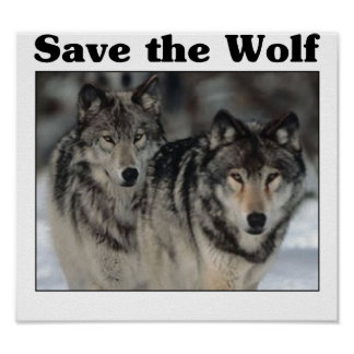Save the Wolf Poster