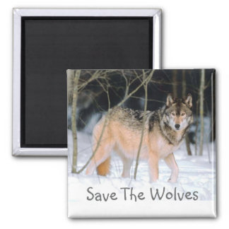 SAVE THE WOLVES 2 INCH SQUARE MAGNET