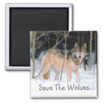 SAVE THE WOLVES MAGNET