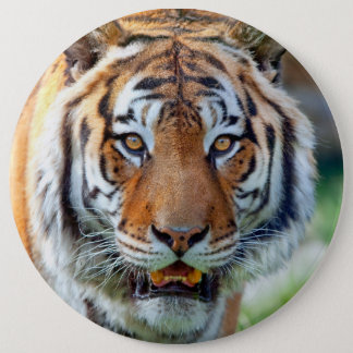 Save Tigers Button