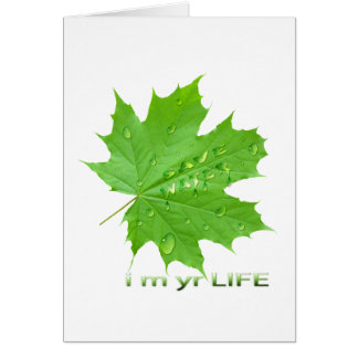 save water-i m yr life cards