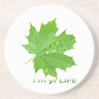 save water-i m yr life coaster