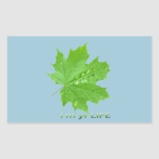 save water-i m yr life rectangular sticker