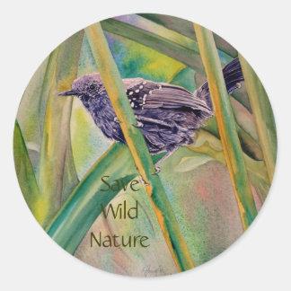 Save Wild Nature - Marsh Antwren Stickers