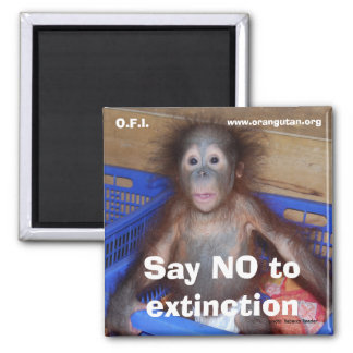 Save Wildlife Conservation 2 Inch Square Magnet