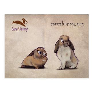 SaveABunny Postcard