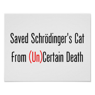 Saved Schrodinger's Cat From (Un)Certain Death Poster