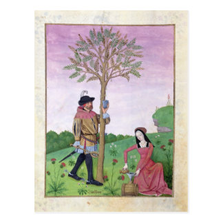 Savia del dibujo de un árbol postal