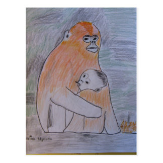 Saving Snub-Nosed Monkeys Postcard
