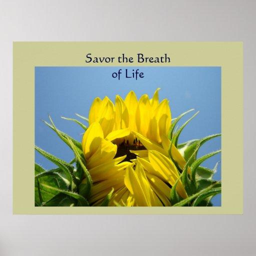 Savor la respiración de la flora del girasol de la posters