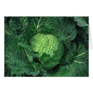 Savoy Cabbage Card