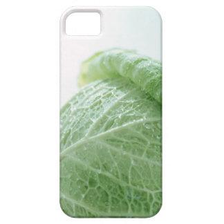 Savoy Cabbage iPhone SE/5/5s Case