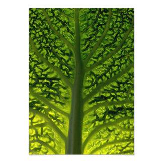 Savoy cabbage leaf invites