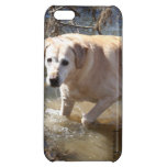 Savvy iPhone 5 case -Yellow Lab  Loves the Water