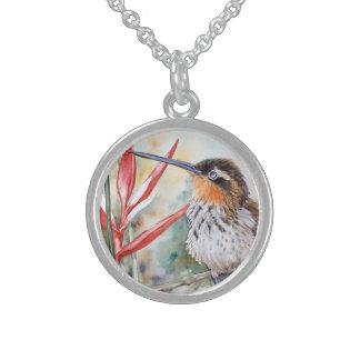 Saw-billed Hermit Hummingbird Custom Jewelry