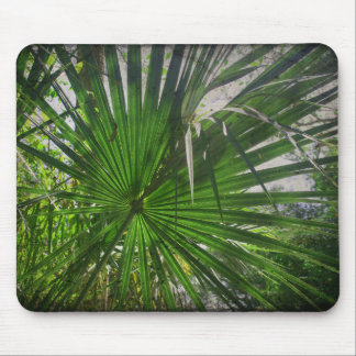 Saw Palmetto Palm Frond Mouse Pad