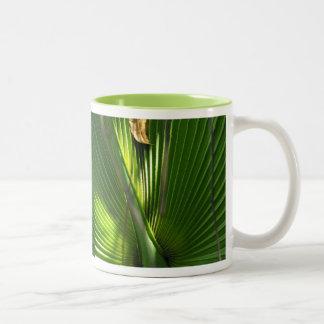 Saw Palmetto Photo Closeup Two-Tone Coffee Mug