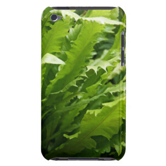 Saw Tooth Kelp Fern Case-Mate iPod Touch iPod Case-Mate Cases
