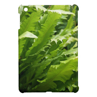 Saw Tooth Kelp Fern iPad Mini Case