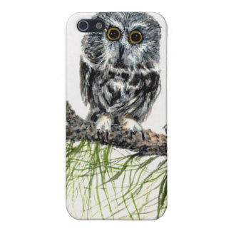 Saw Whet Owl 4G iPhone Case