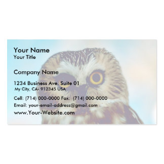 Saw-whet owl business card templates