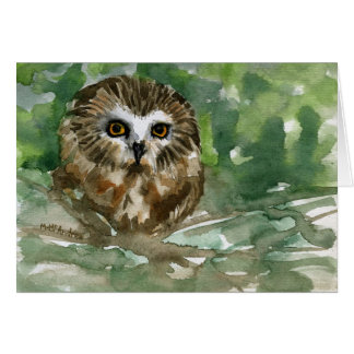 """""""Saw Whet Owl"""" Cards"""