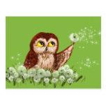Saw-whet owl dandelion postcards