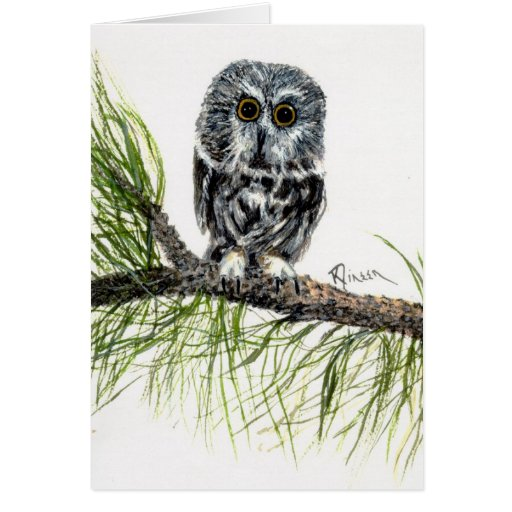 Saw Whet Owl Note Card