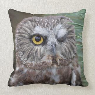 Saw-whet Owl Pillows