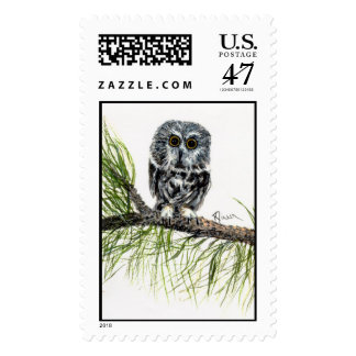 Saw Whet Owl postage Stamp