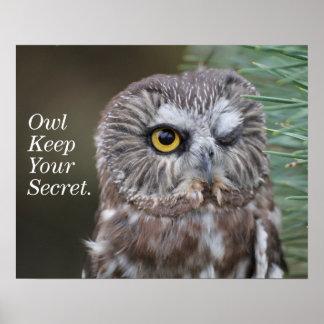 Saw-whet Owl Poster