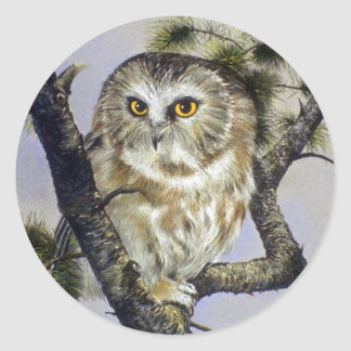 Saw-Whet Owl Round Stickers