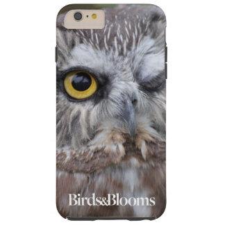 Saw-whet Owl Tough iPhone 6 Plus Case