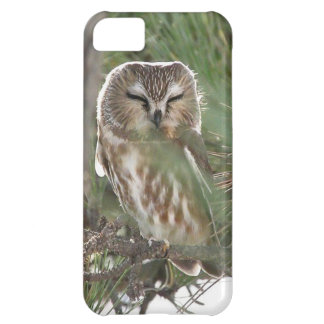 Saw Whett Owl Sleeps outside Motel on Jersey Shore Case For iPhone 5C