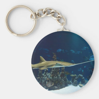 Sawfish (Carpenter Shark) Basic Round Button Keychain