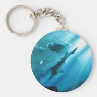 Sawfish & Wrasse in Blue Basic Round Button Keychain