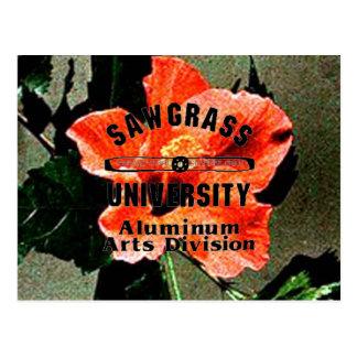 SAWGRASS UNIVERSITY ALUMINUM ARTS DIVISION LOGO POSTCARD