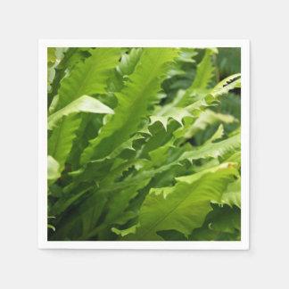Sawtooth Kelp Fern Paper Napkins