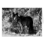 Sawtooth Pack Note Card