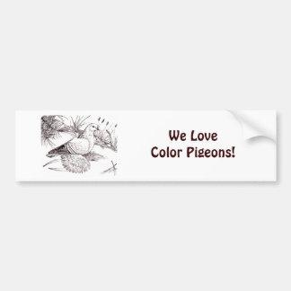 Saxon Field Pigeon Bumper Sticker