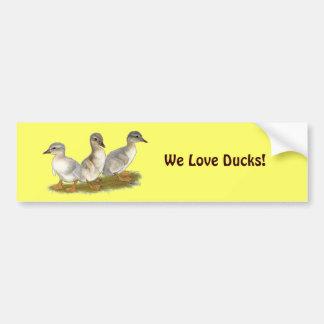 Saxony Ducklings Car Bumper Sticker