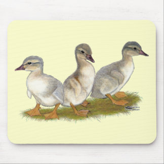 Saxony Ducklings Mouse Pad