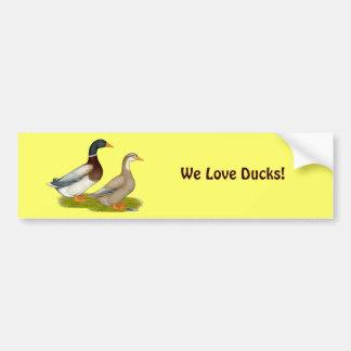 Saxony Ducks Bumper Sticker