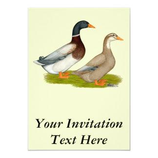 Saxony Ducks Card