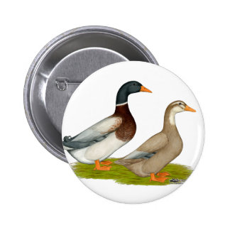 Saxony Ducks Pinback Button