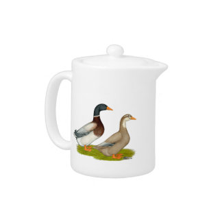 Saxony Ducks