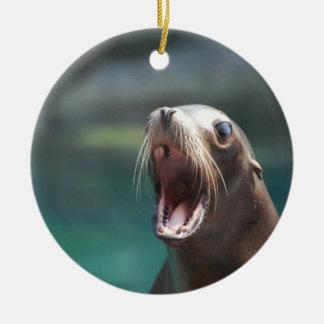 Say Ahhhhh Christmas Ornaments