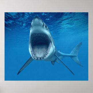 Say Ahhhhh Shark Print