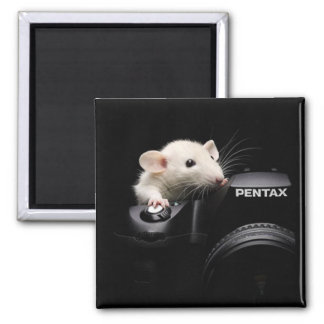 Say Cheese! 2 Inch Square Magnet